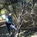Environmental Commissioner Tom Woodruff clearing trail at Frenchtown Preserve