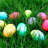 Easter Egg Hunt 3/26