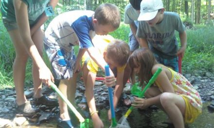Summer Nature Day Camp at Frenchtown Borough Park